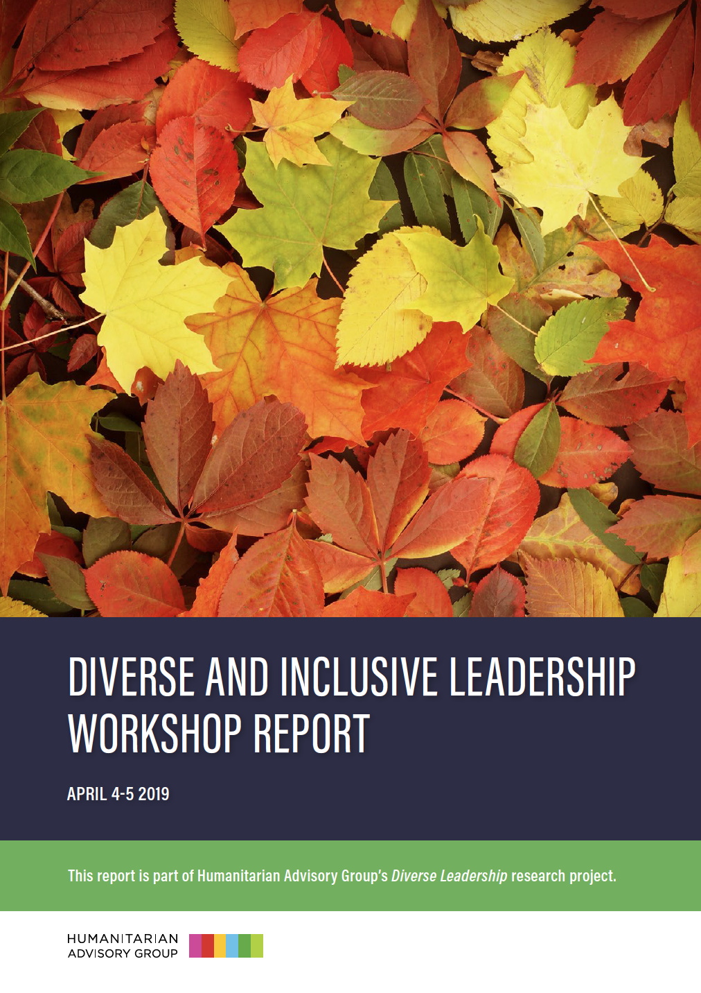 Diverse and Inclusive Leadership Workshop Report